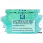 stripe-onetime-subscription-payments-sca-ready.jpg